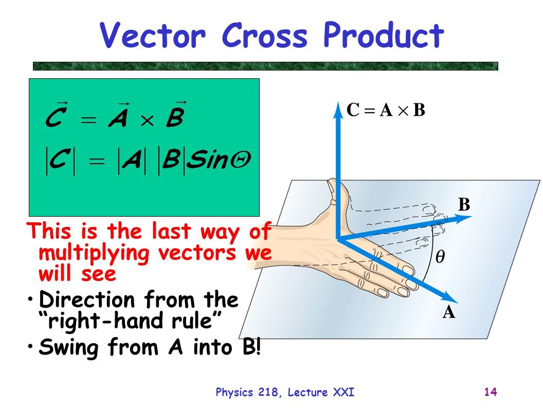 Angle Force Vectors Physics Draw A Freebody Diagram For Goldfish