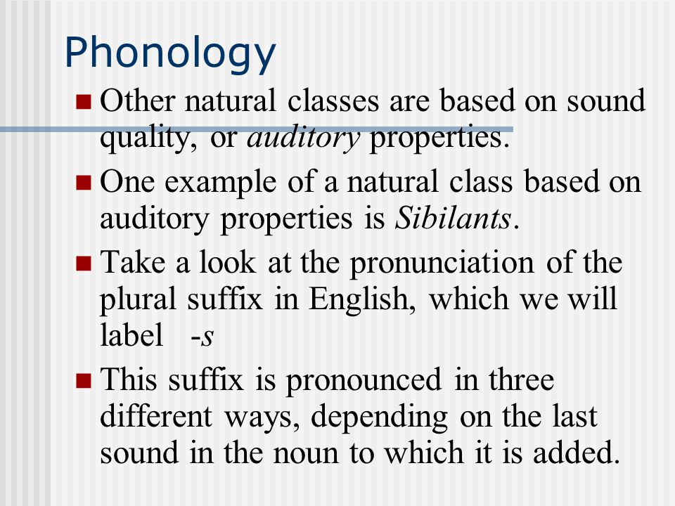 Phonology The Idea Of Feature Systems That We Have Been