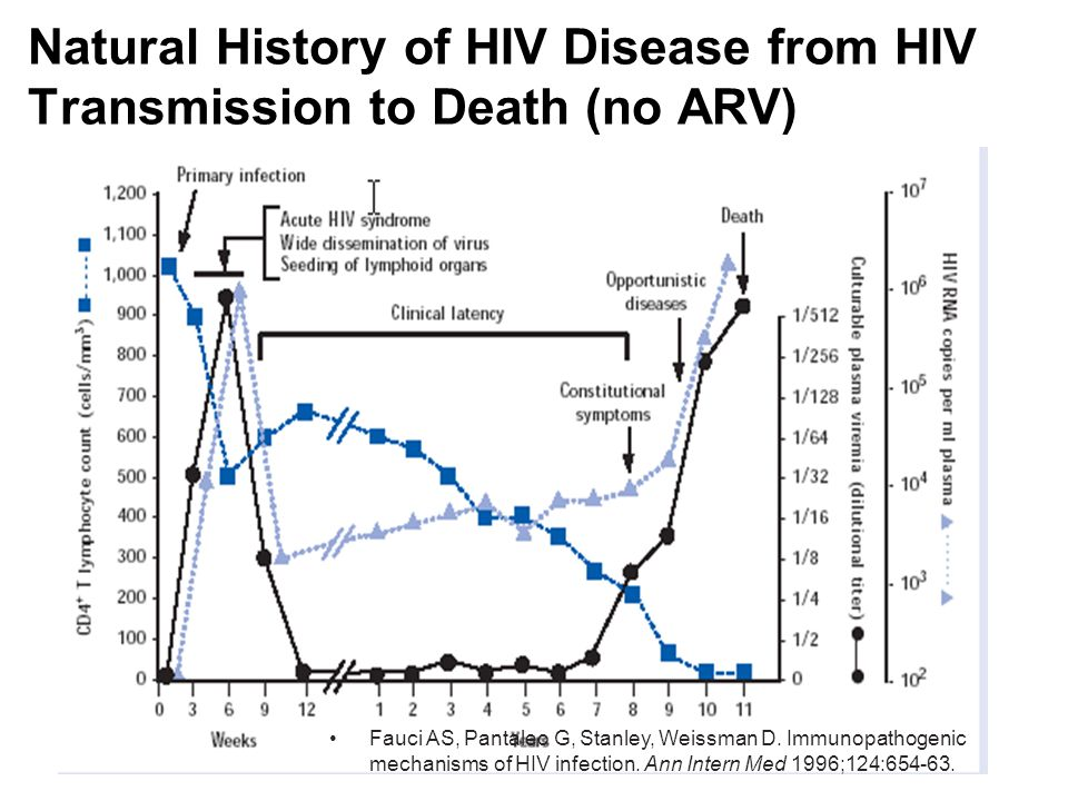Slide 1 HIV Pathogenesis and Natural Course of the Disease
