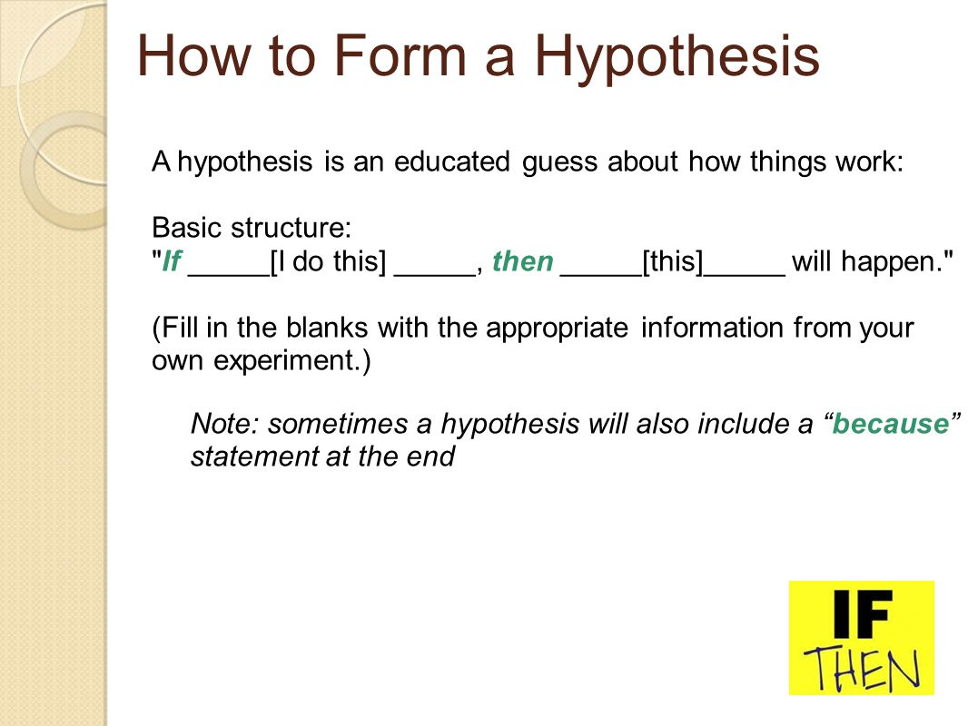 How To Plan And Write A Testable Hypothesis