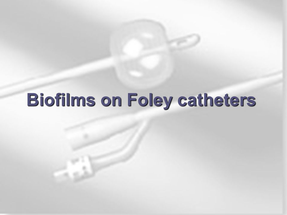 Biofilms On Medical Devices Ppt Video Online Download