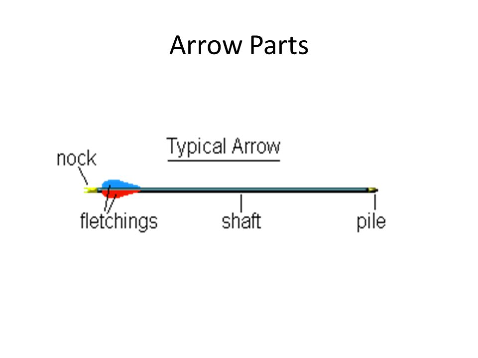 archery bow diagram control 4 lighting wiring archery. - ppt video online download