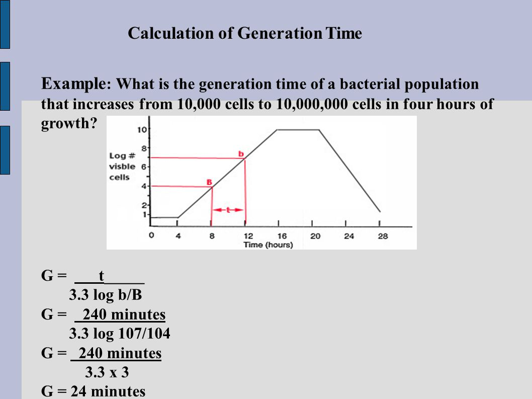 Doubling Time Equation For Bacteria