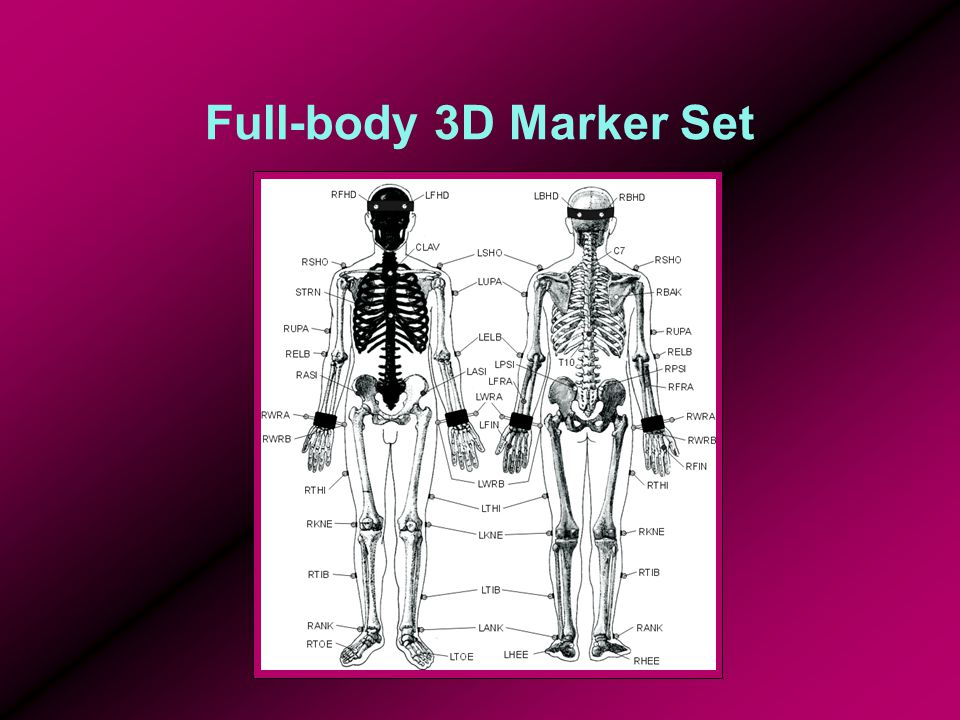 what is a mapping diagram 1jz vvti wiring pdf biomechanics of walking - ppt video online download