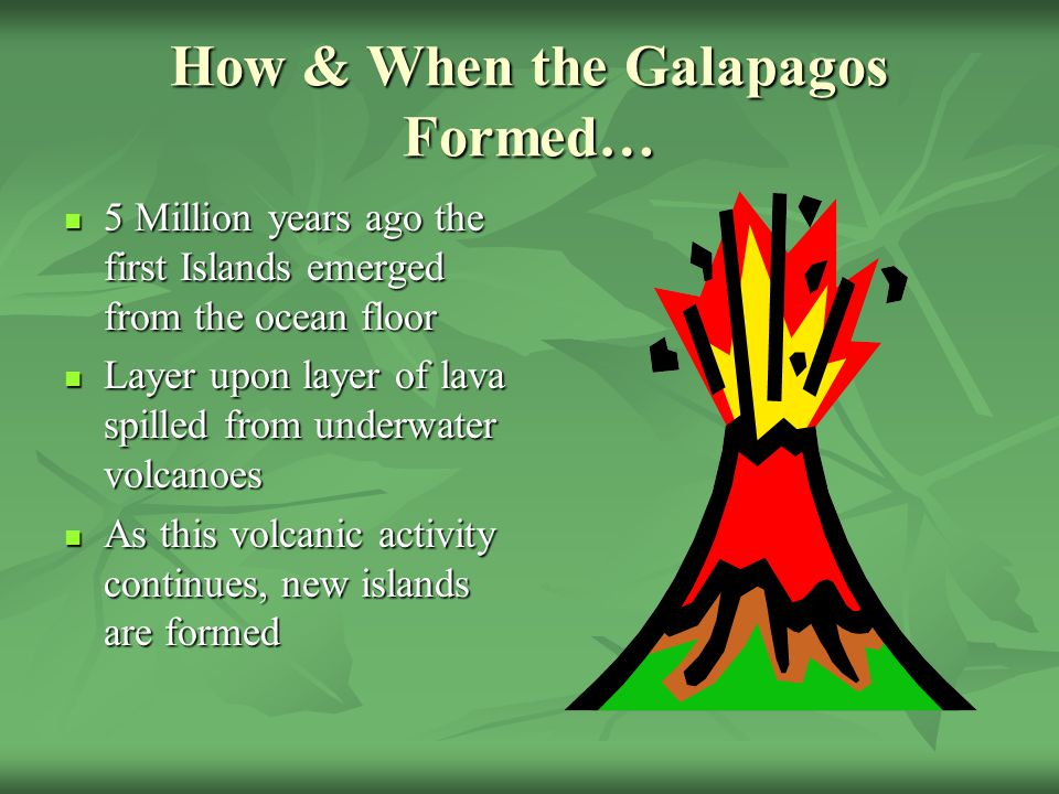 Biomes Islands  Evolution  ppt video online download