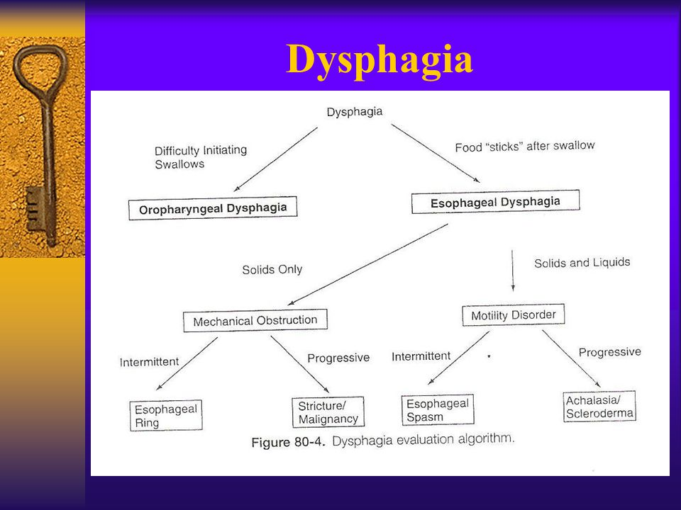 swallowing food diagram amp wiring diagrams dysphagia dr.krisana thaitong. - ppt download