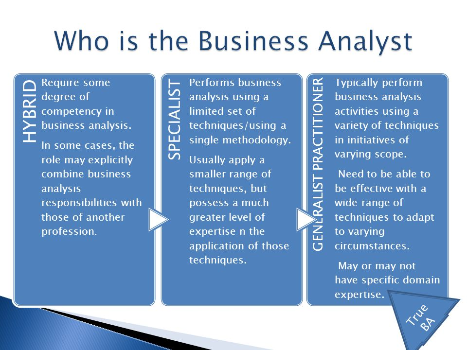 Are Business Analysts Enterprise Architects  ppt video