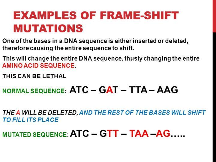 Example Of Frameshift Mutation | Frameswalls.org