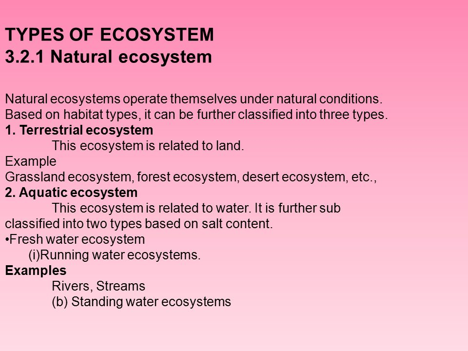 CONCEPT OF ECOLOGY AND ECOSYSTEM Ppt Download