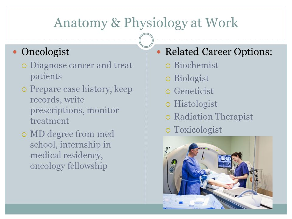 Anatomy and Physiology at Work  ppt download