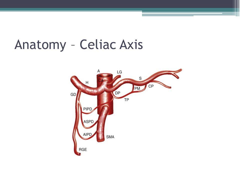 Famous Hepatic Arterial Anatomy Pattern - Image of internal organs ...