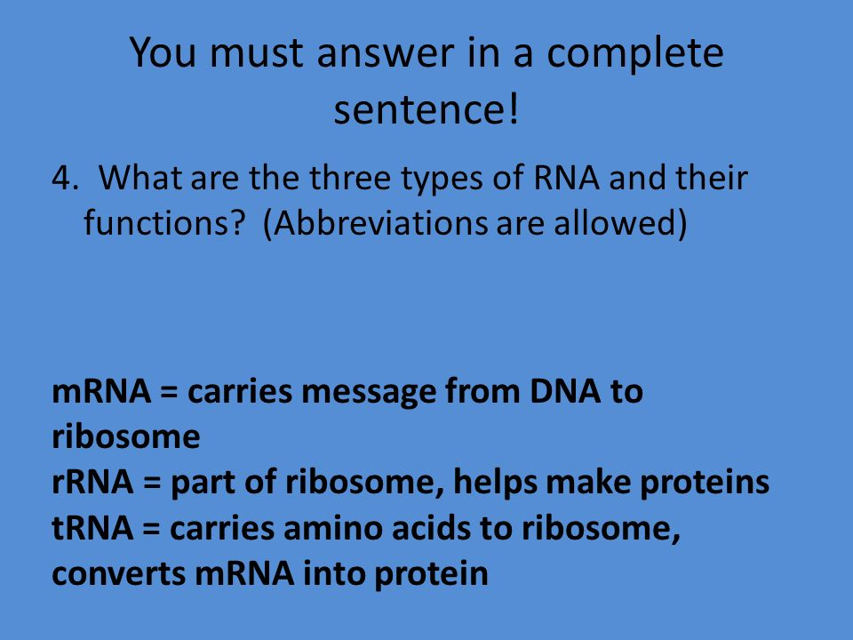 Rrna Mrna Trna Functions