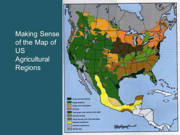 Classifying Agricultural Regions ppt download