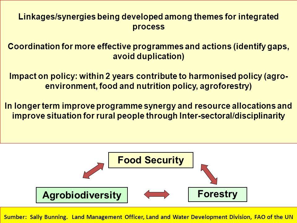 Food Security Policy Kenya