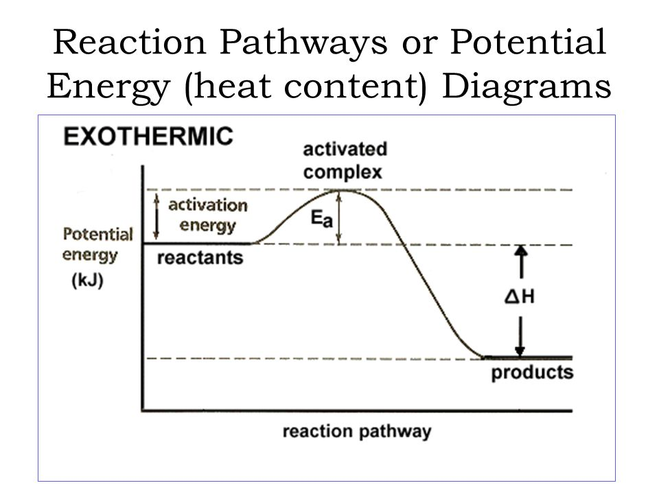 potential energy diagram activation 7 prong wiring chemical equations & reactions - ppt video online download
