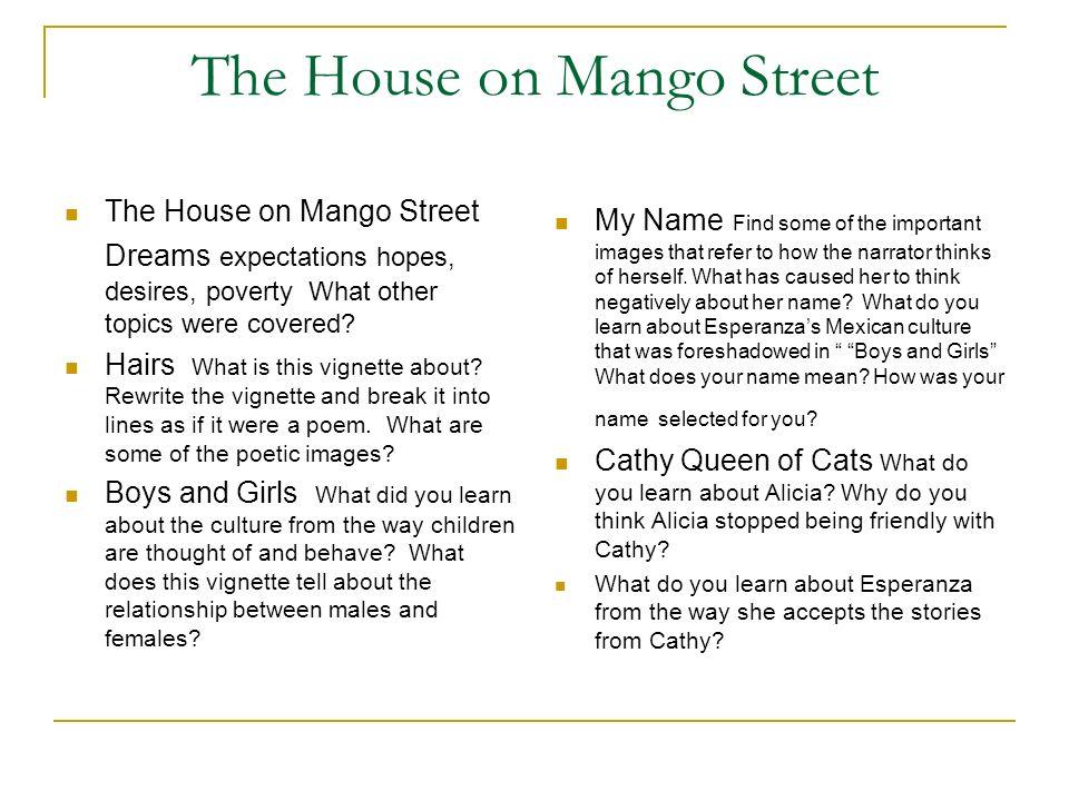 The House On Mango Street Essay Hospi Noiseworks Co