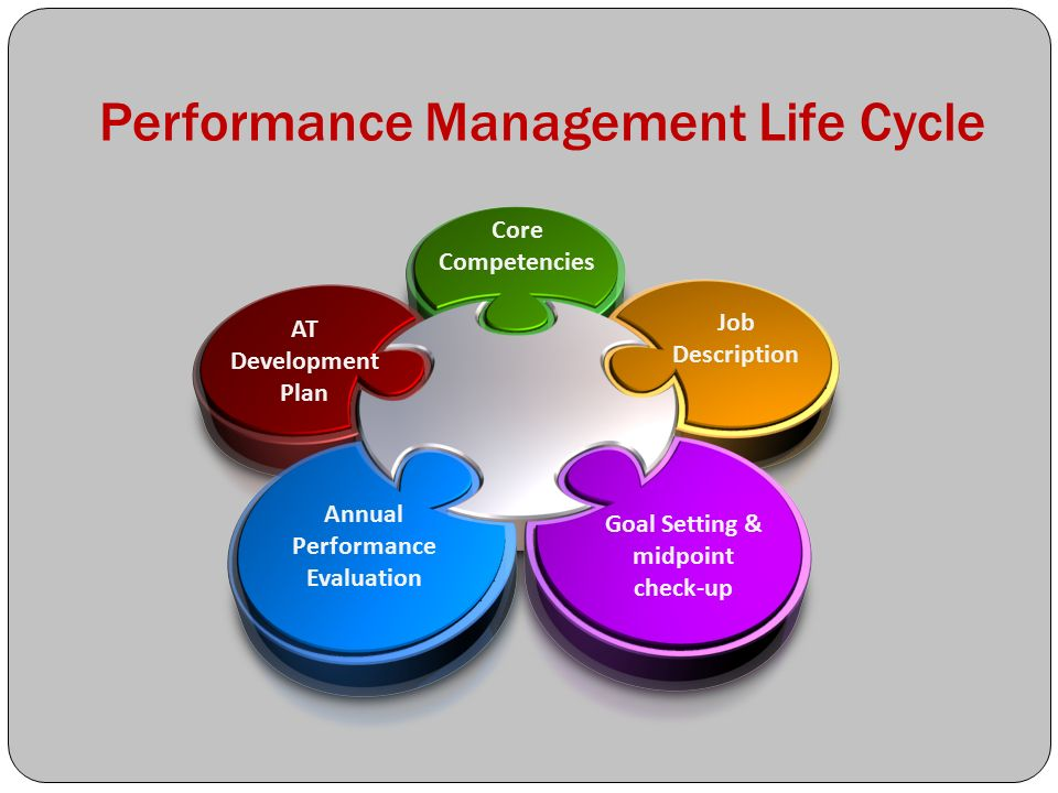 employee life cycle diagram 2001 holden vectra stereo wiring performance management for it leaders - ppt video online download
