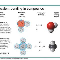 Sodium Electron Shell Diagram Toyota Corolla Parts Atom- Molecule-element- Compound Relationship - Ppt Download