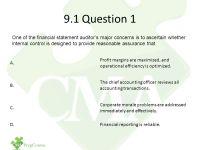 Part 1 Study Unit 9 Internal Controls  Risk and ...
