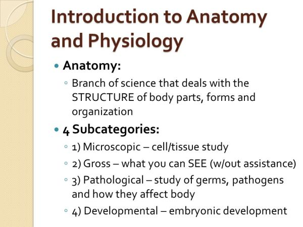 Introduction To Anatomy Physiology Characteristics Of - MVlC