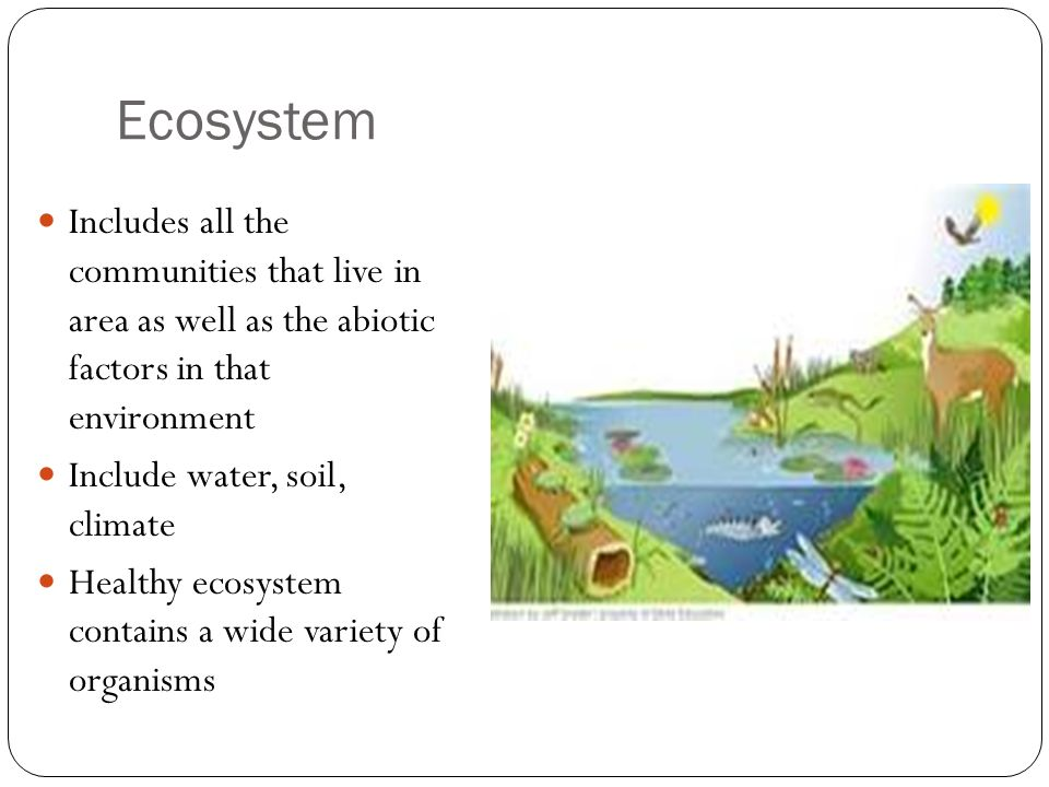 Change In The Biosphere Ppt Video Online Download
