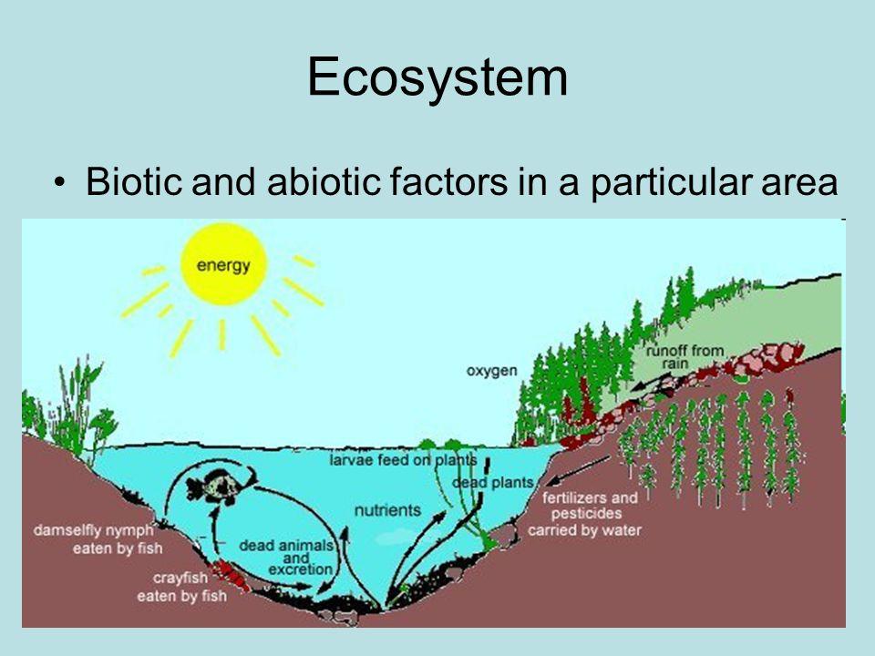Diagram Of Abiotic Factors