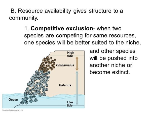 Chapter 14 Interactions in Ecosystems ppt video online