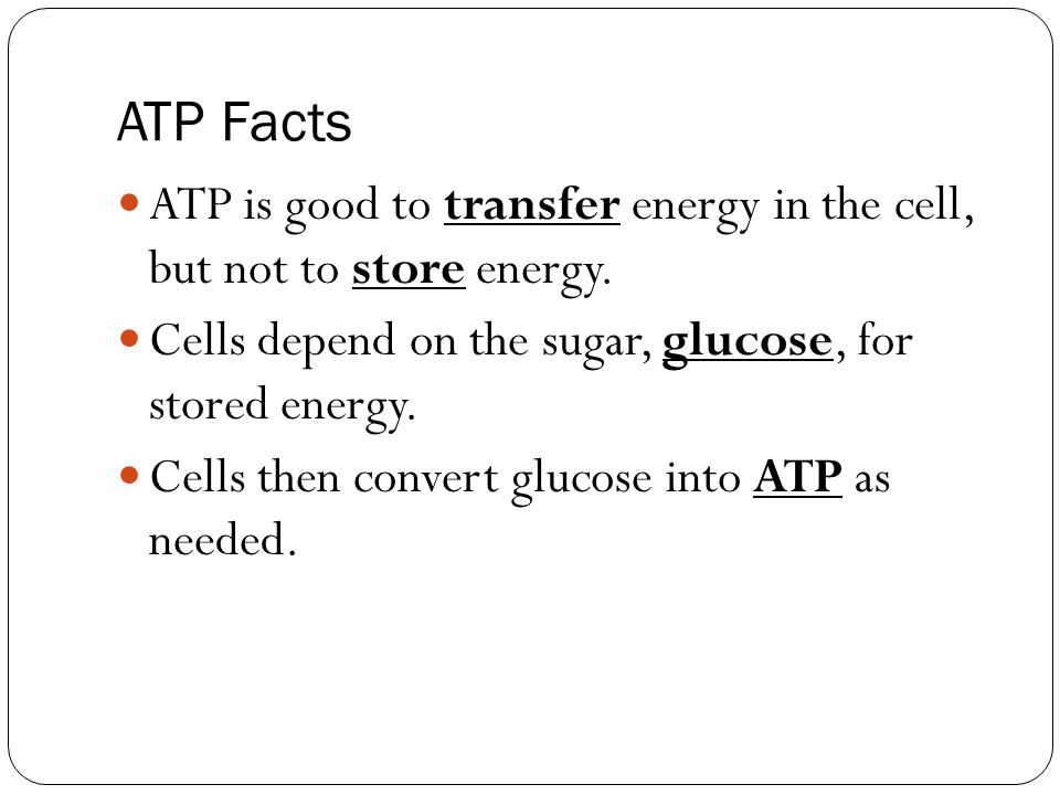 glycolysis cycle diagram wiring double outlet chemical energy and atp - ppt video online download