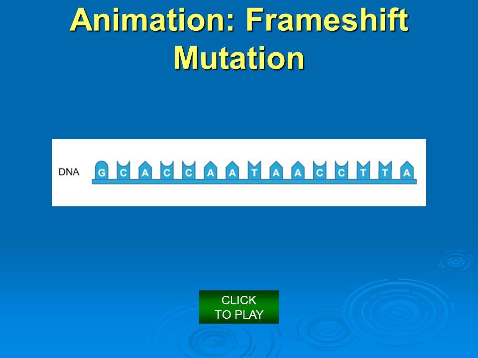 Frameshift Mutation Animation