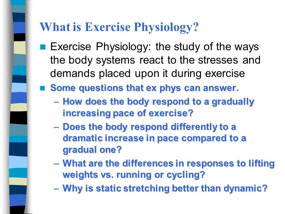 Exercise And Physical Activity Ppt Download