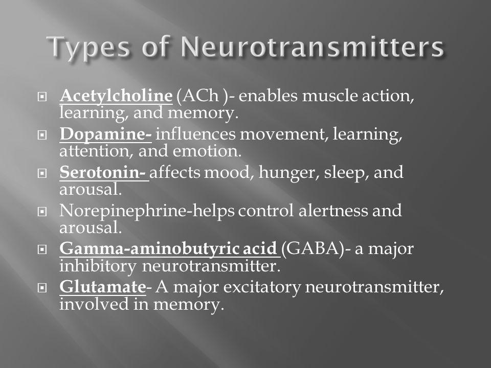 Neuroscience And Behavior Ppt Video Online Download