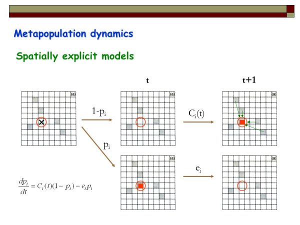 Demographic matrix models for structured populations ppt