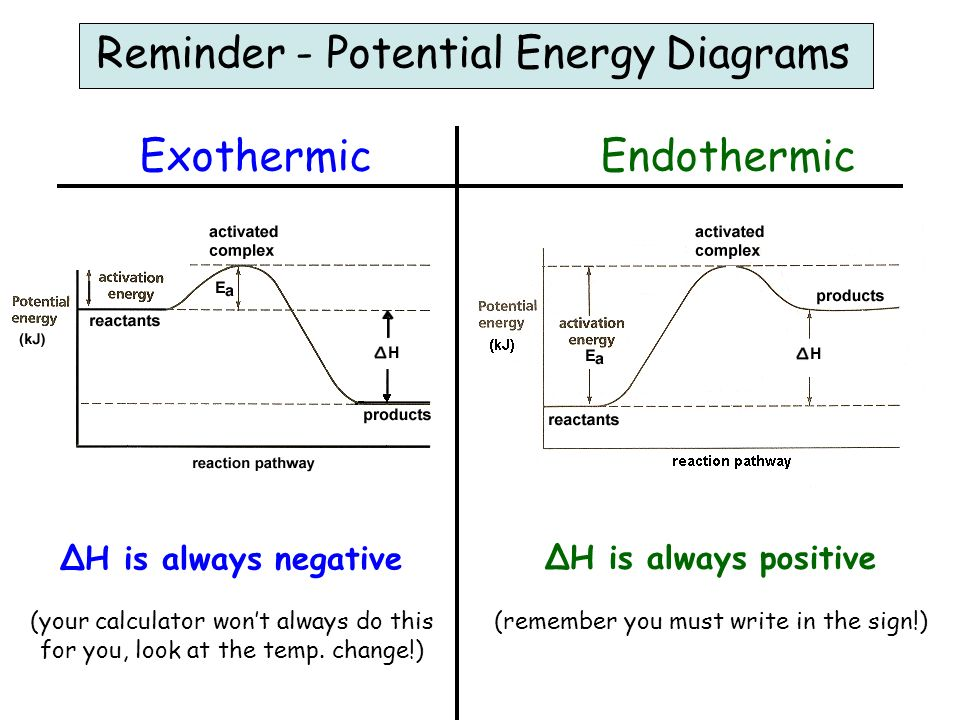 Labeled Potential Energy Diagram Endo Search For Wiring Diagrams