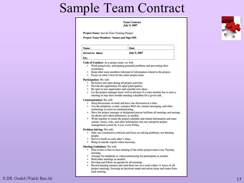 project team contract template | trattorialeondoro