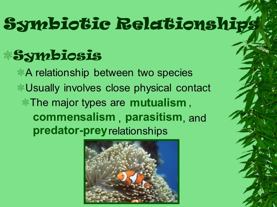 Ecological Relationships Ppt Video Online Download