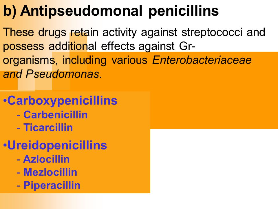 Cross Allergy Penicillin