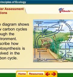 chapter 2 principles of ecology ppt video online download explain phosphorus cycle with schematic representation explain phosphorus cycle with diagram [ 1104 x 768 Pixel ]