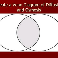 Passive And Active Transport Venn Diagram Ileocecal Valve Diffusion & Osmosis S7l2. - Ppt Download