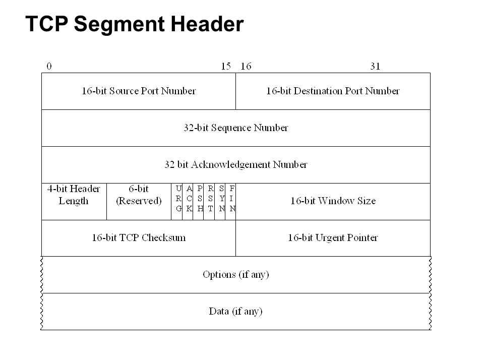 tcp three way handshake diagram 4 pin voltage regulator wiring tcp/ip network, transport and application layers - ppt download