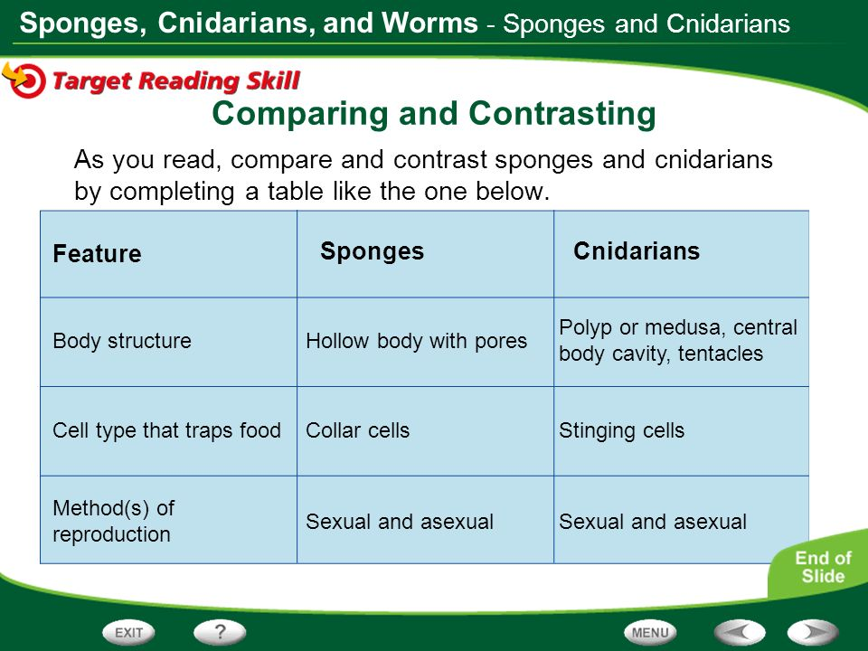 venn diagram sexual and asexual reproduction ge washer wiring table of contents what is an animal? animal symmetry - ppt video online download
