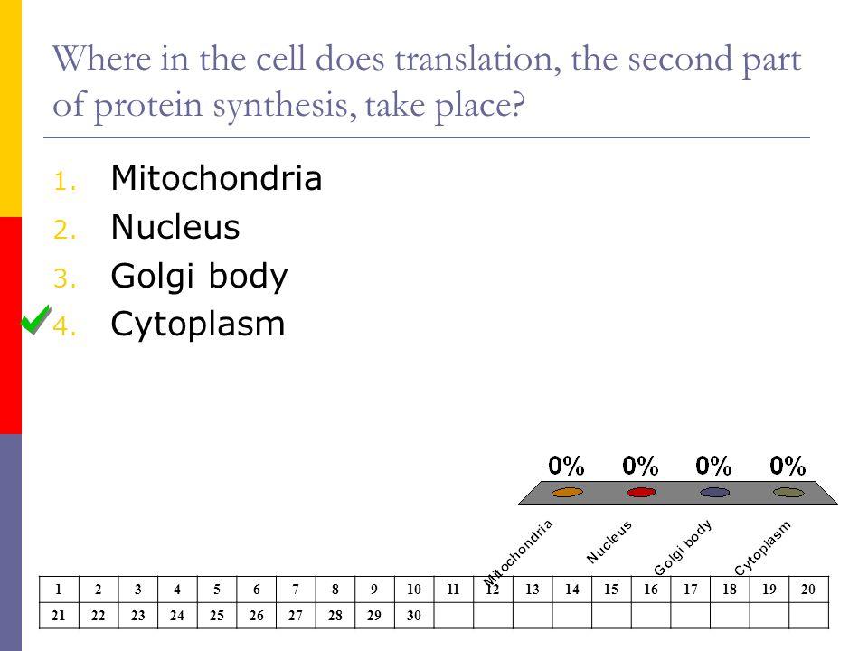 Role Of Mrna Transcription Translation Diagram