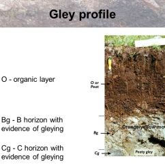 Glacial Till Diagram Orion Bms Wiring Higher Geography Physical Environments Biosphere Soils - Ppt Video Online Download