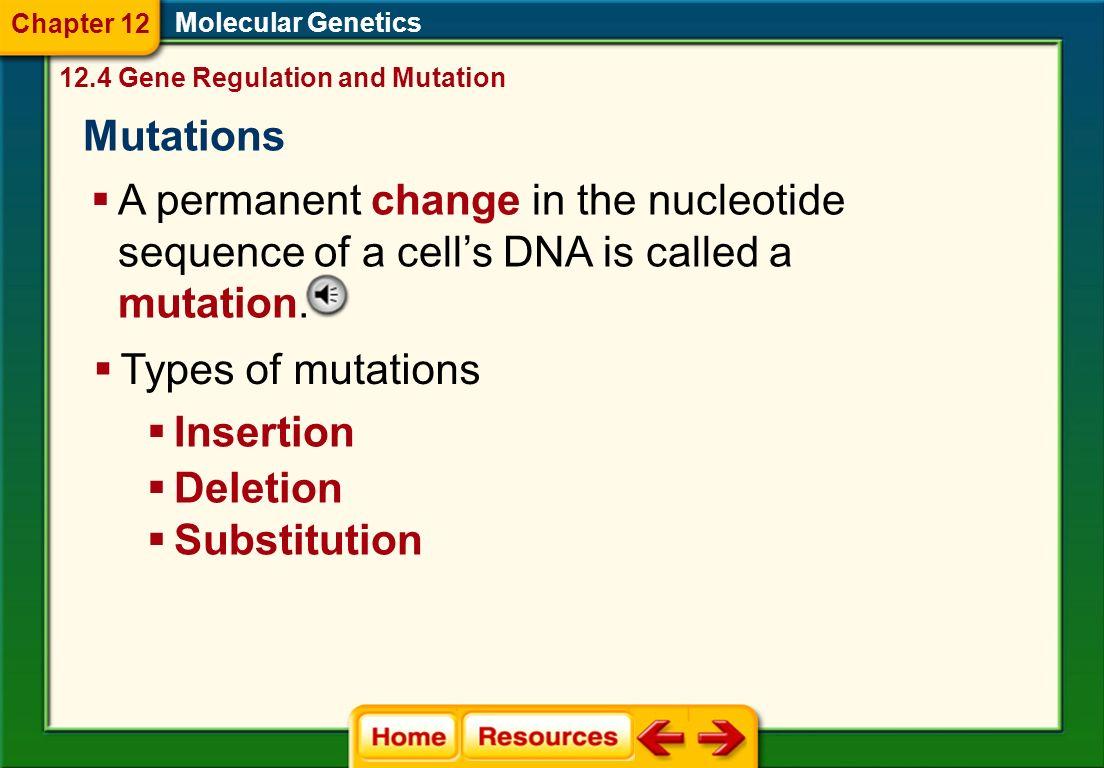 Mutations 12 4 State Standard