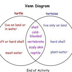 How To Complete A Venn Diagram Wiring For House Lights Living Systems Communications Ii Second Grade - Ppt Video Online Download