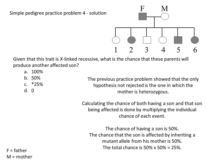 simple pedigree diagram 1998 ford ranger starter wiring analysis through genetic hypothesis testing ppt