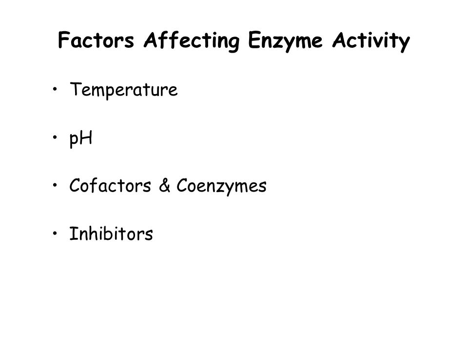 What Are Enzymes? An enzyme is a catalyst in cellular