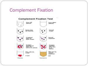 2 Basic Immunologic Procedures Part 5 Agglutination  ppt video online download