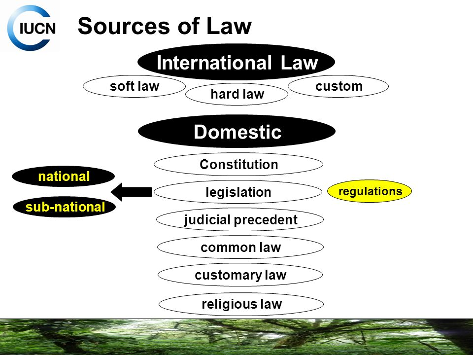 Building Capacity on Protected Areas Law  Governance  ppt download