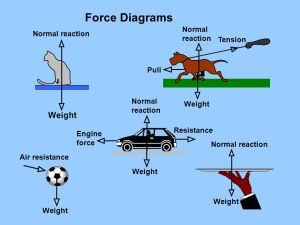 Forces T tension mass M mg In equilibrium T = mg weight