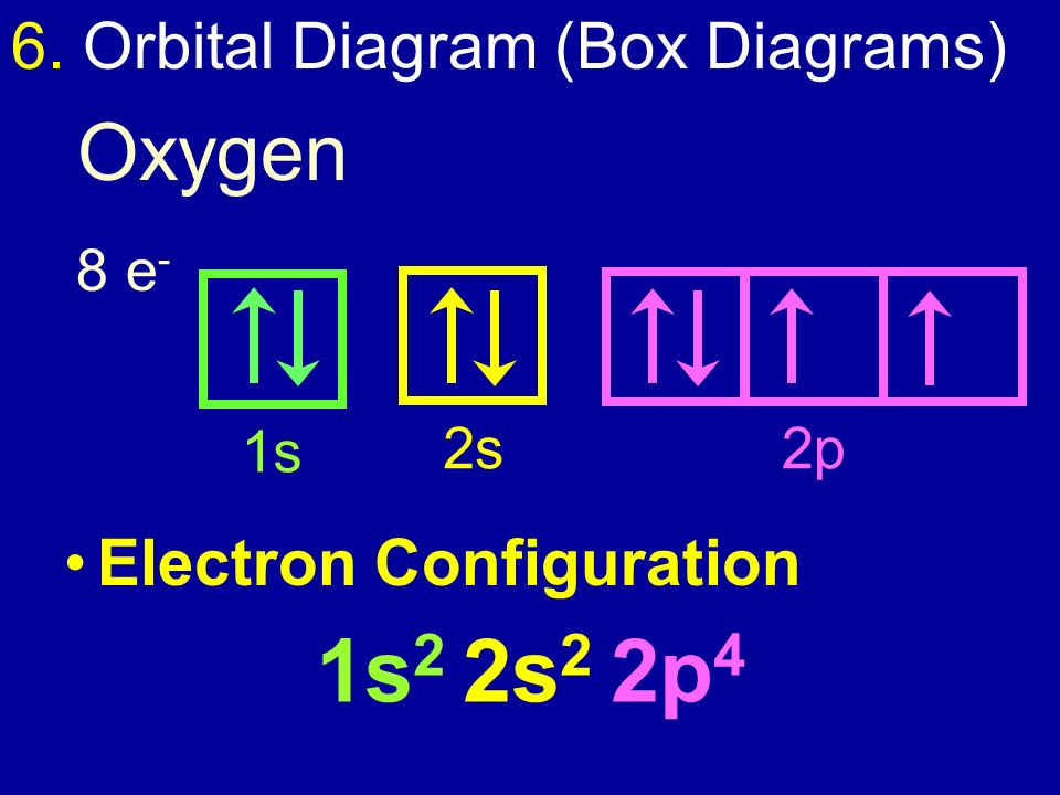 energy level diagram for oxygen animal vs plant cell electron configuration - ppt video online download